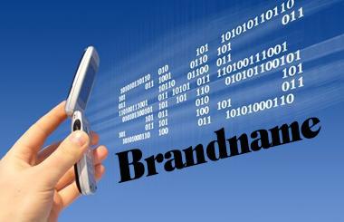 sms_brand_name
