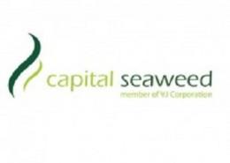 Capital-Seaweed-Consumer-Việt-Nam_-logo-210x160