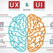 ux-ui designer